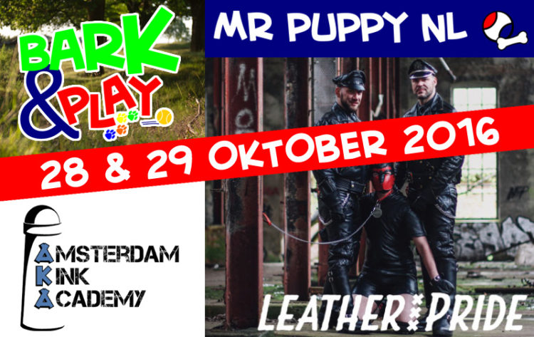 Bark & Play 4 - Mr Puppy NL